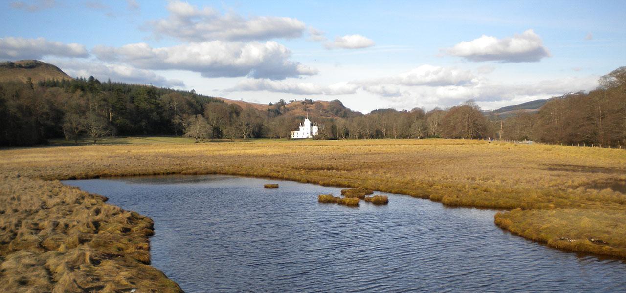 New castle Lachlan