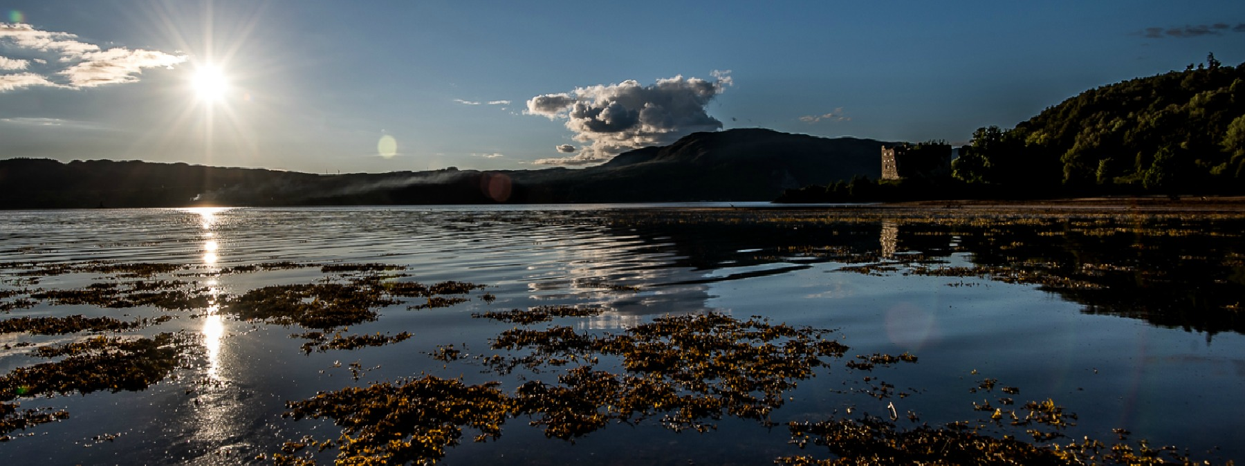 Summer day on Loch Fyne